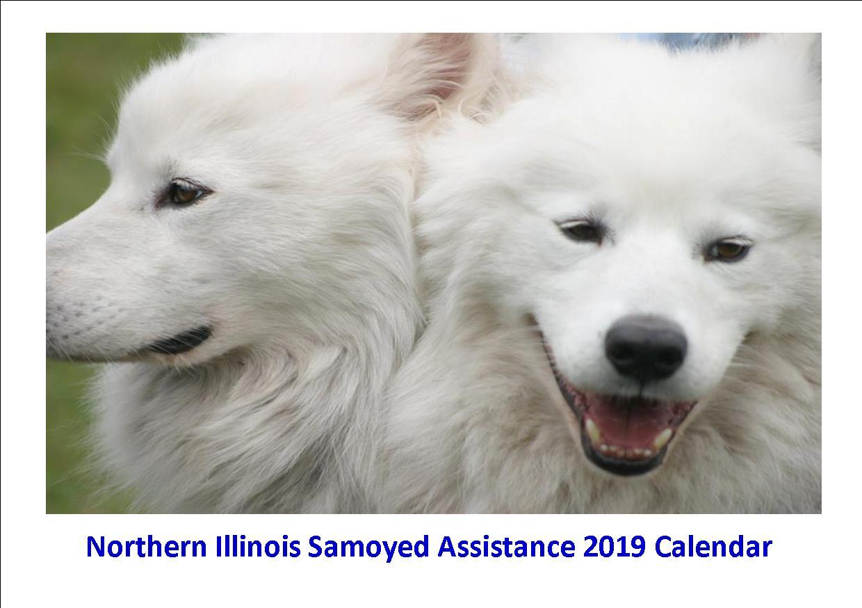 Northern Illinois Samoyed Assistance